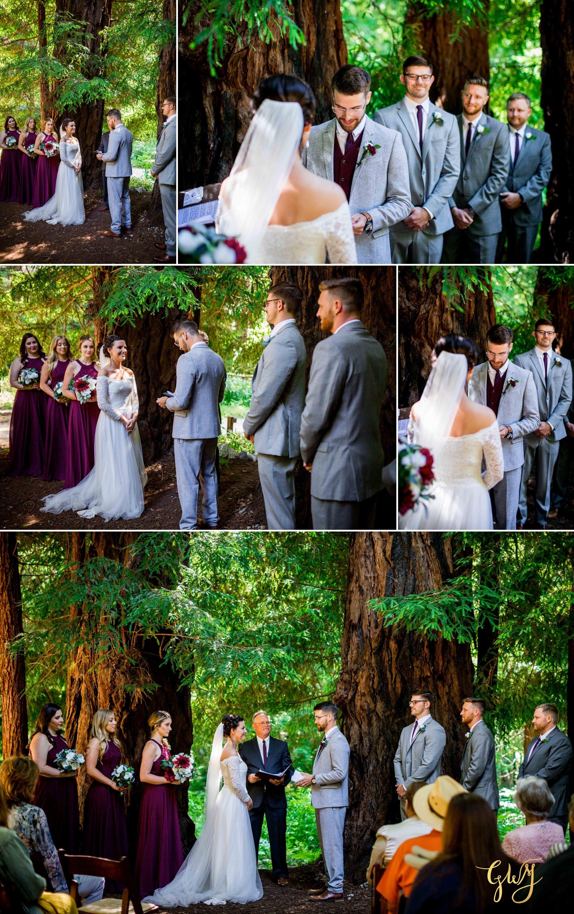 Casey + Jordan's Intimate Big Sur Elopement in the Redwoods by Glass Woods Media 34.jpg