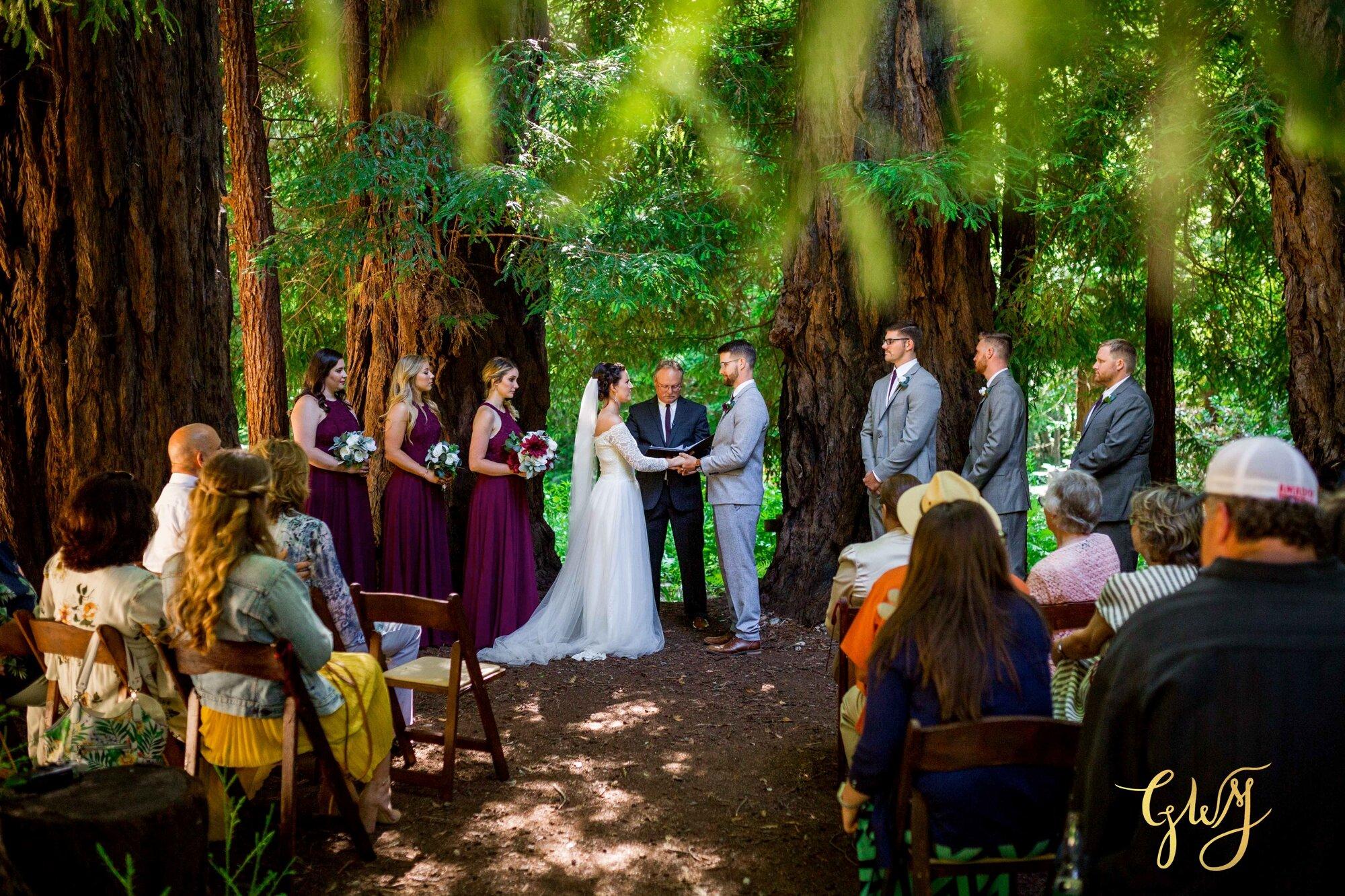 Casey + Jordan's Intimate Big Sur Elopement in the Redwoods by Glass Woods Media 37.jpg
