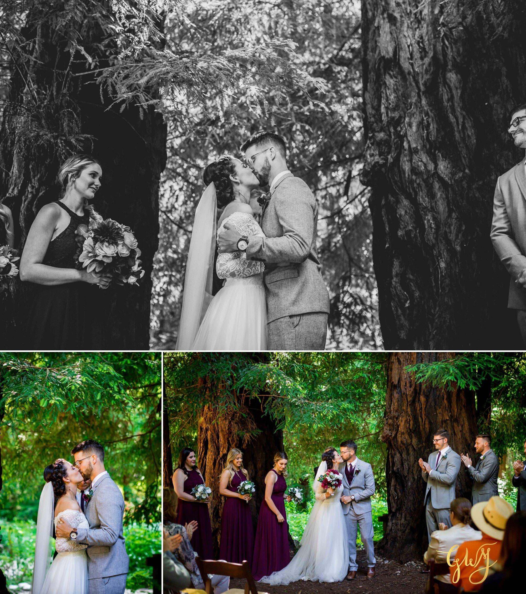Casey + Jordan's Intimate Big Sur Elopement in the Redwoods by Glass Woods Media 40.jpg