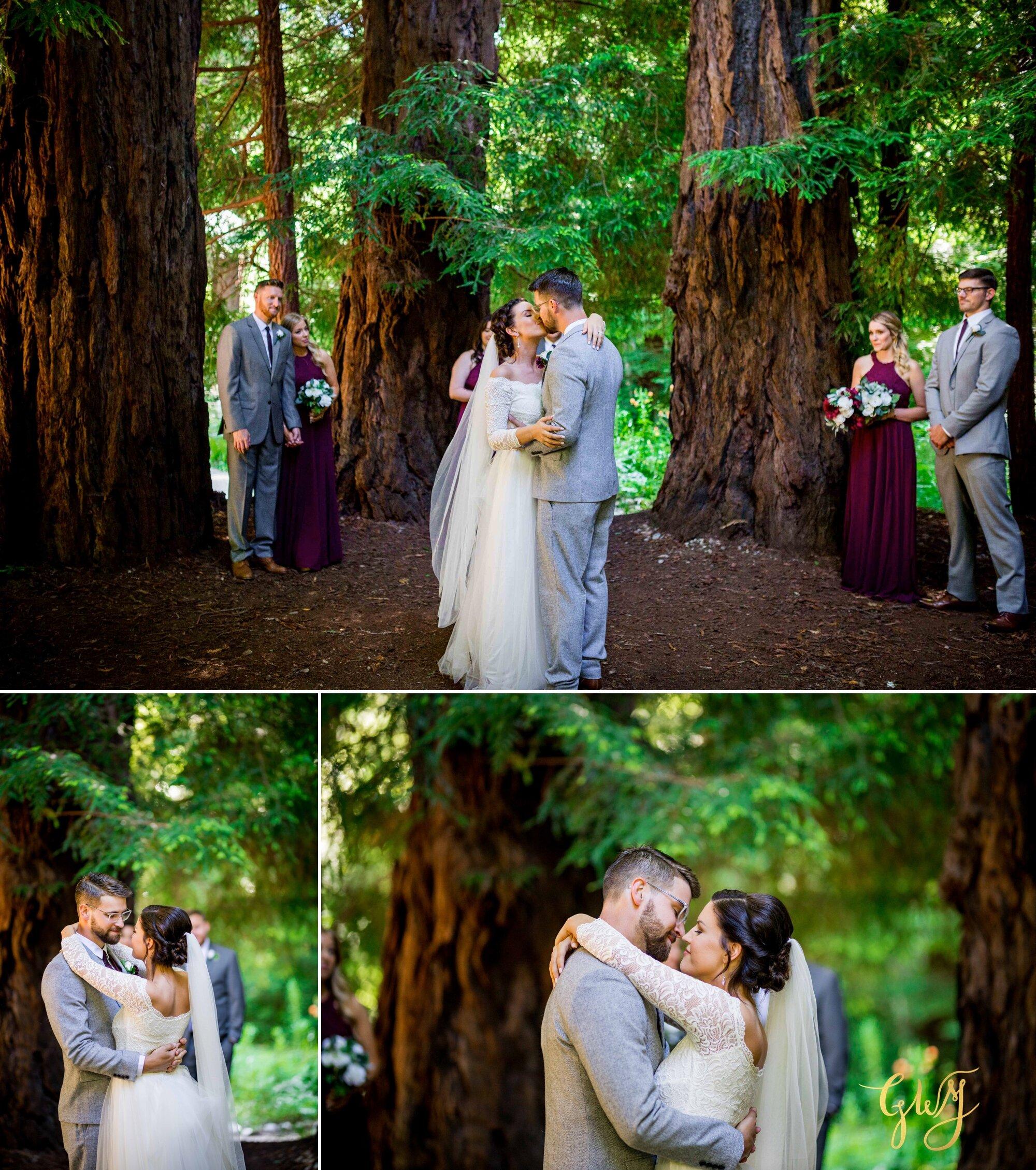 Casey + Jordan's Intimate Big Sur Elopement in the Redwoods by Glass Woods Media 43.jpg