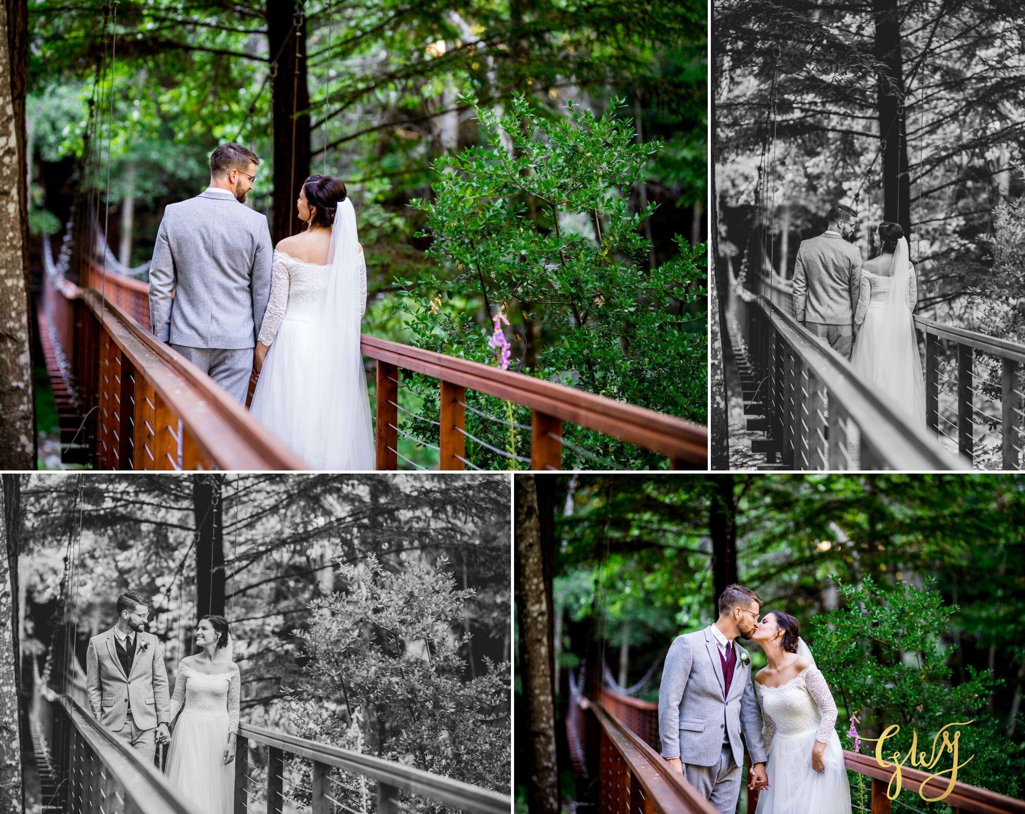 Casey + Jordan's Intimate Big Sur Elopement in the Redwoods by Glass Woods Media - 2 4.jpg