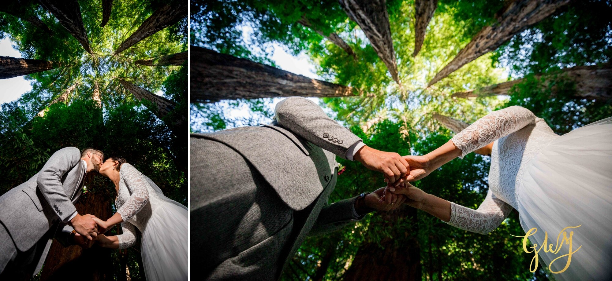 Casey + Jordan's Intimate Big Sur Elopement in the Redwoods by Glass Woods Media - 2 6.jpg