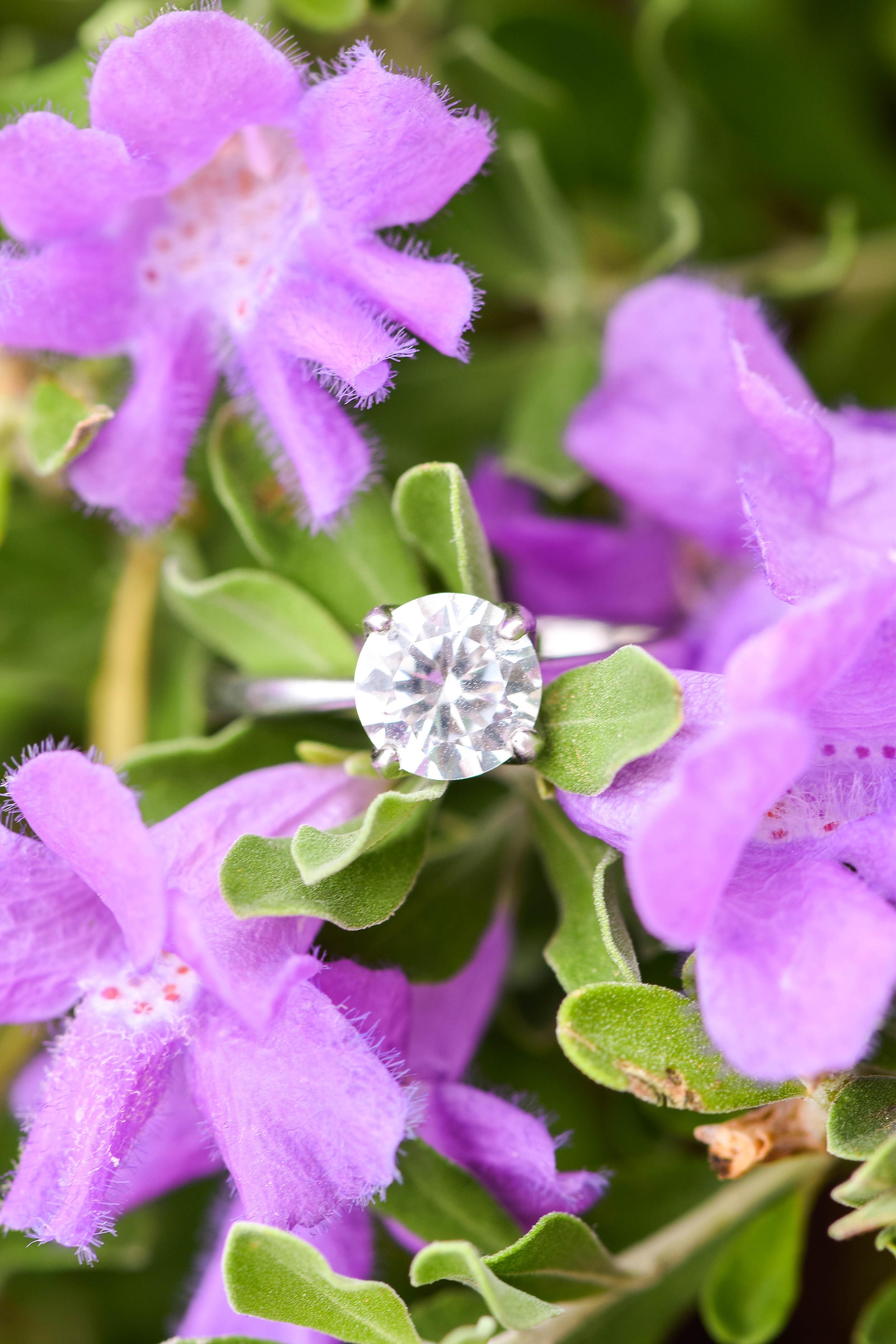 ring9515-0022.jpg