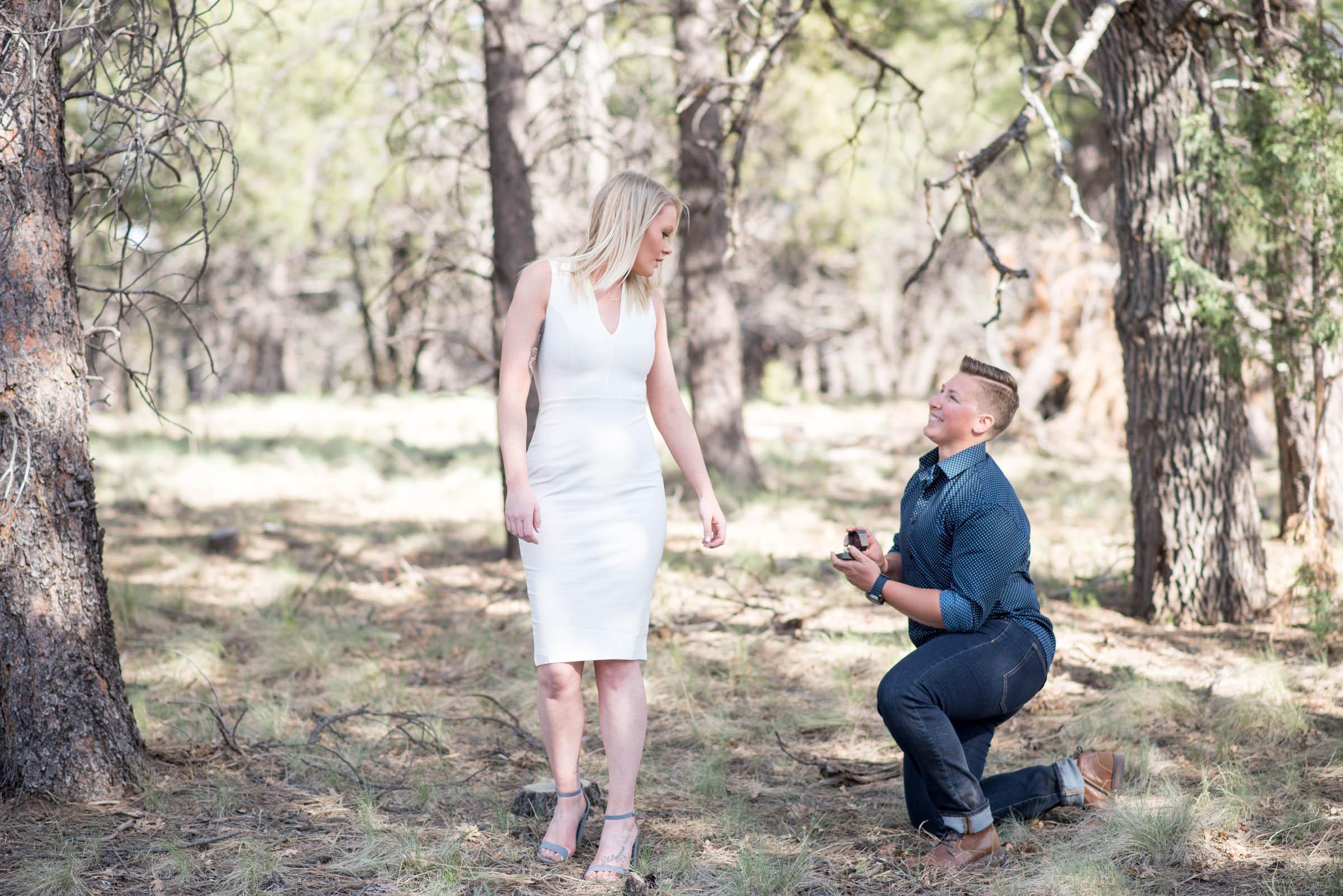 Sierra-Lauren-Engagement-MichelleHoffmanPhotography-66.jpg