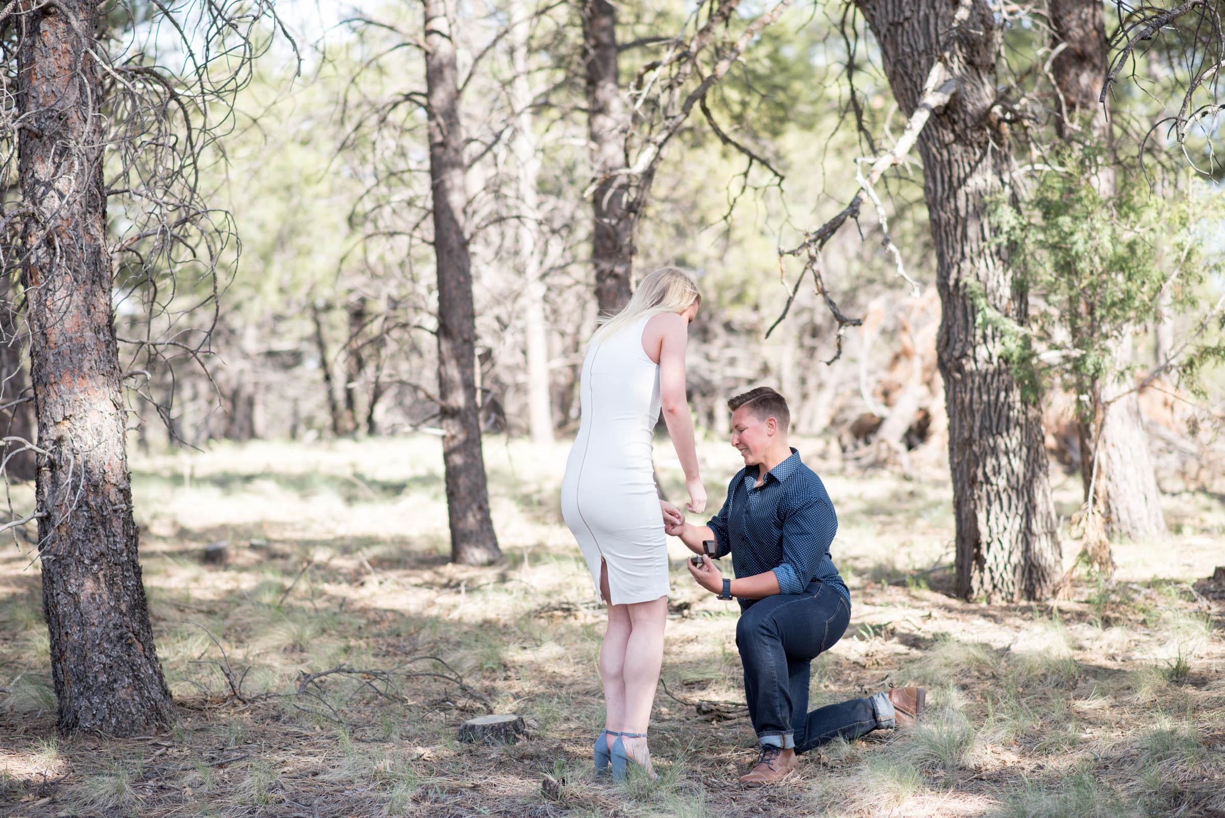 Sierra-Lauren-Engagement-MichelleHoffmanPhotography-74.jpg