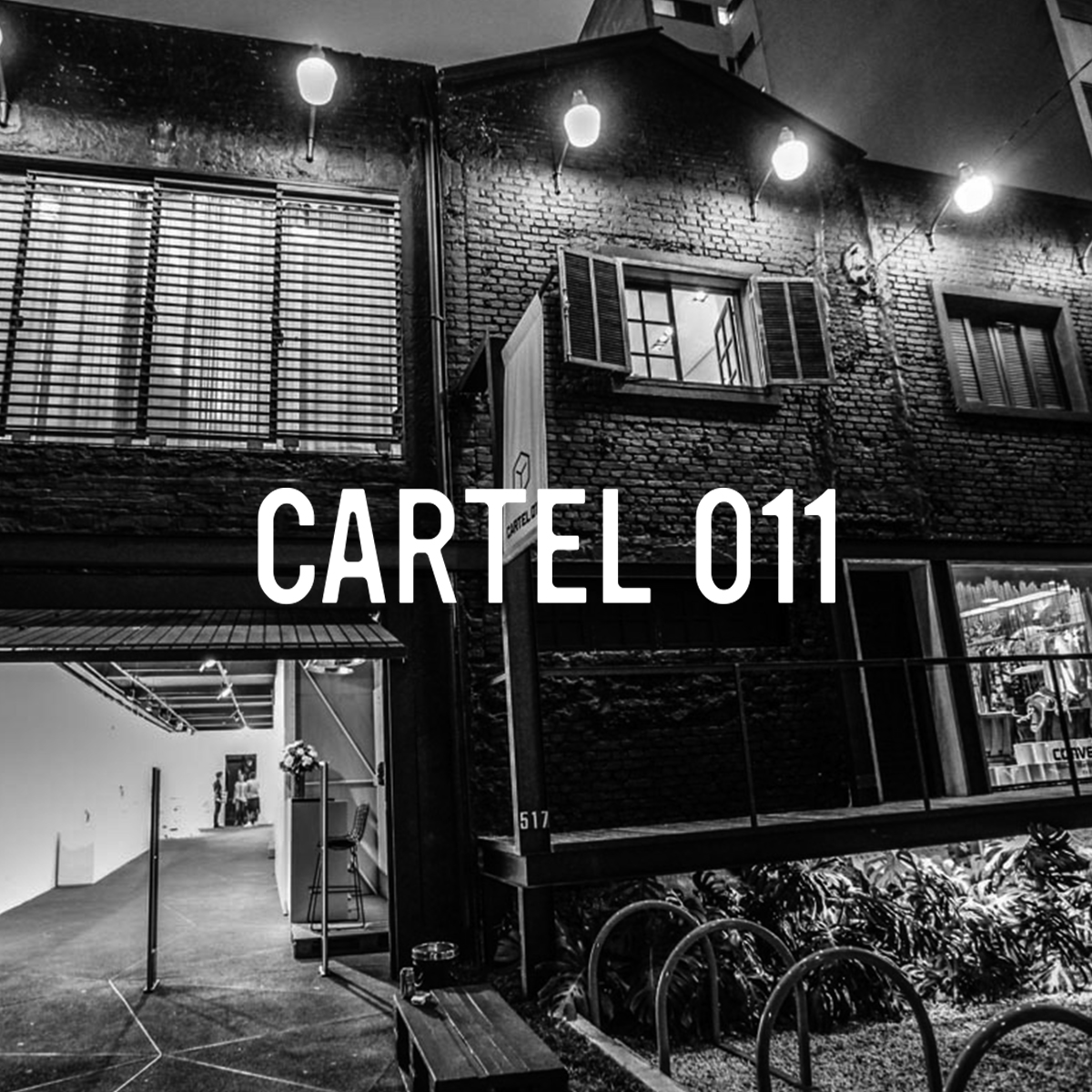 cartel 011.jpg