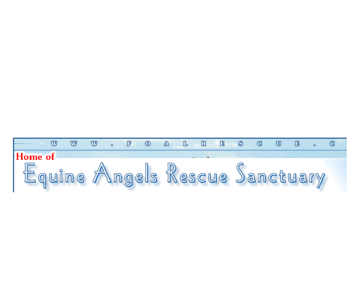Charities_EQUINE ANGELS RESCUE.png