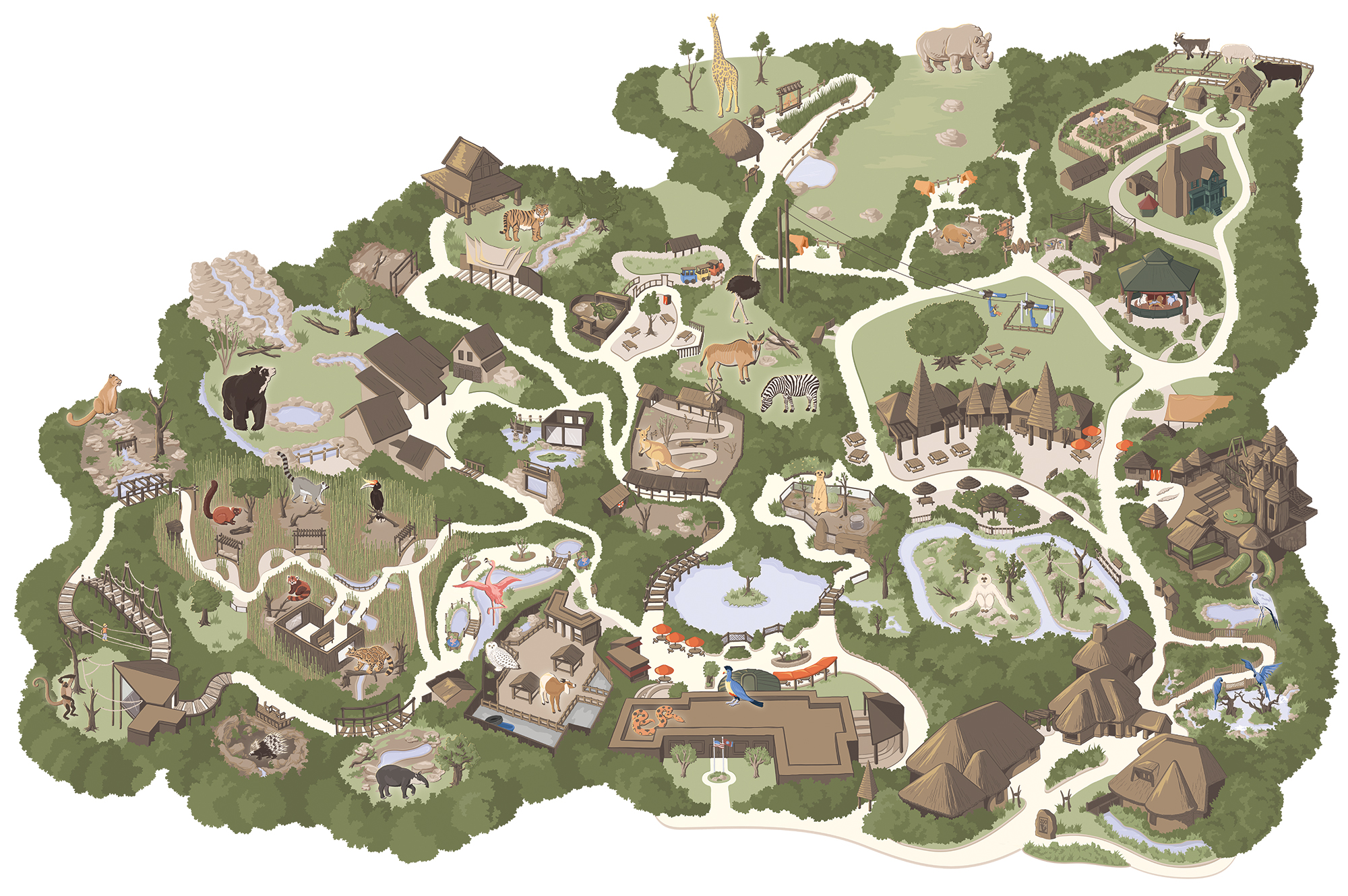 The Nashville Zoo map illustration without the labels (pictured with labels below...)