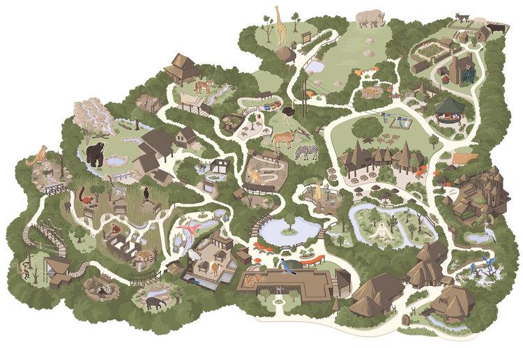 Making the Nashville Zoo Map — Carden Illustration on