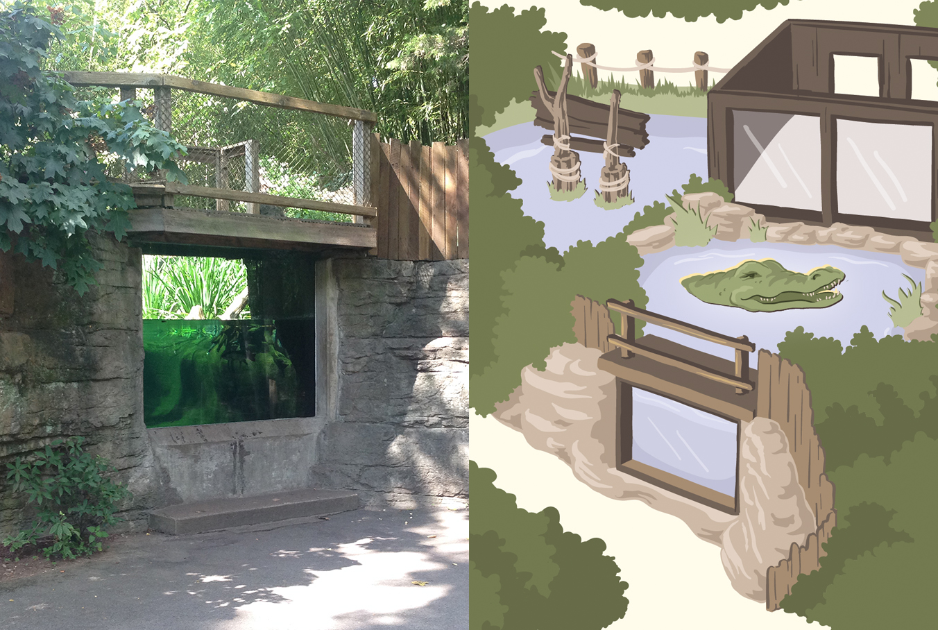 Alligator Cove - this one was kinda complicated because it can be viewed from two different levels one either side, but it worked out.