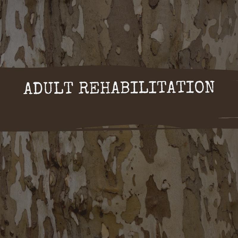 adult rehabilitation (1).jpg
