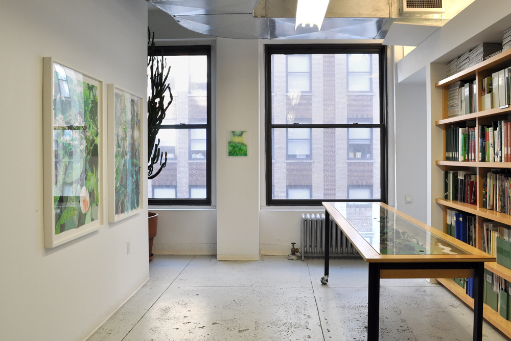 Installation view: Naomi Reis,  Borrowed Landscapes , The Horticultural Society of New York, Project Space, August 7 – September 13, 2013.