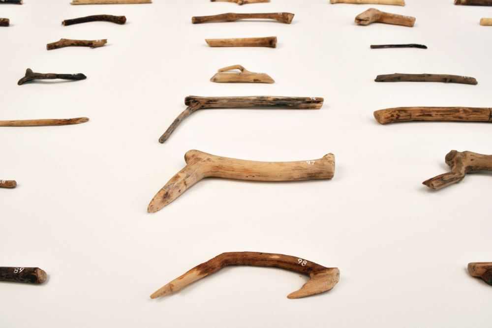 Anna Plesset,  Observe, Notice, Understand, June 1  –  November 30, 2010  (detail), 2010-11, Found twigs and twigs made of clay and gouache, Dimensions variable.