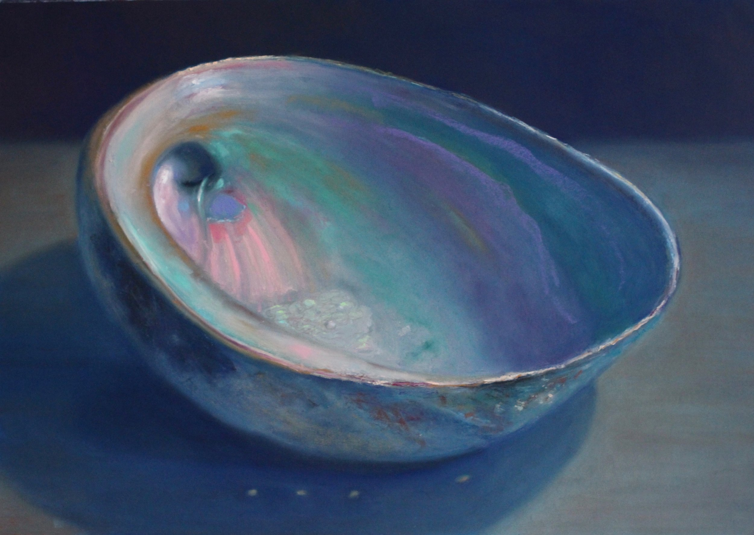 """Abalone, aggrandized"" (Haida Gwaii Series) pastel on paper, 18.5"" x 26.5""  Sold"