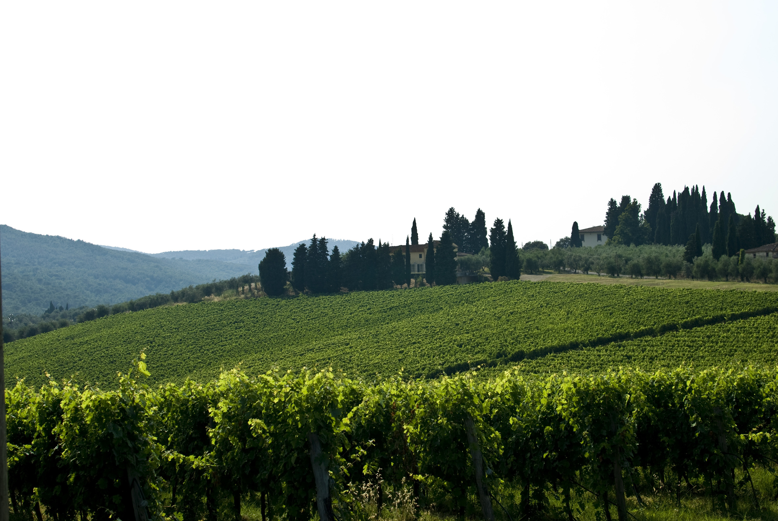 tuscany_4797892158_o.jpg
