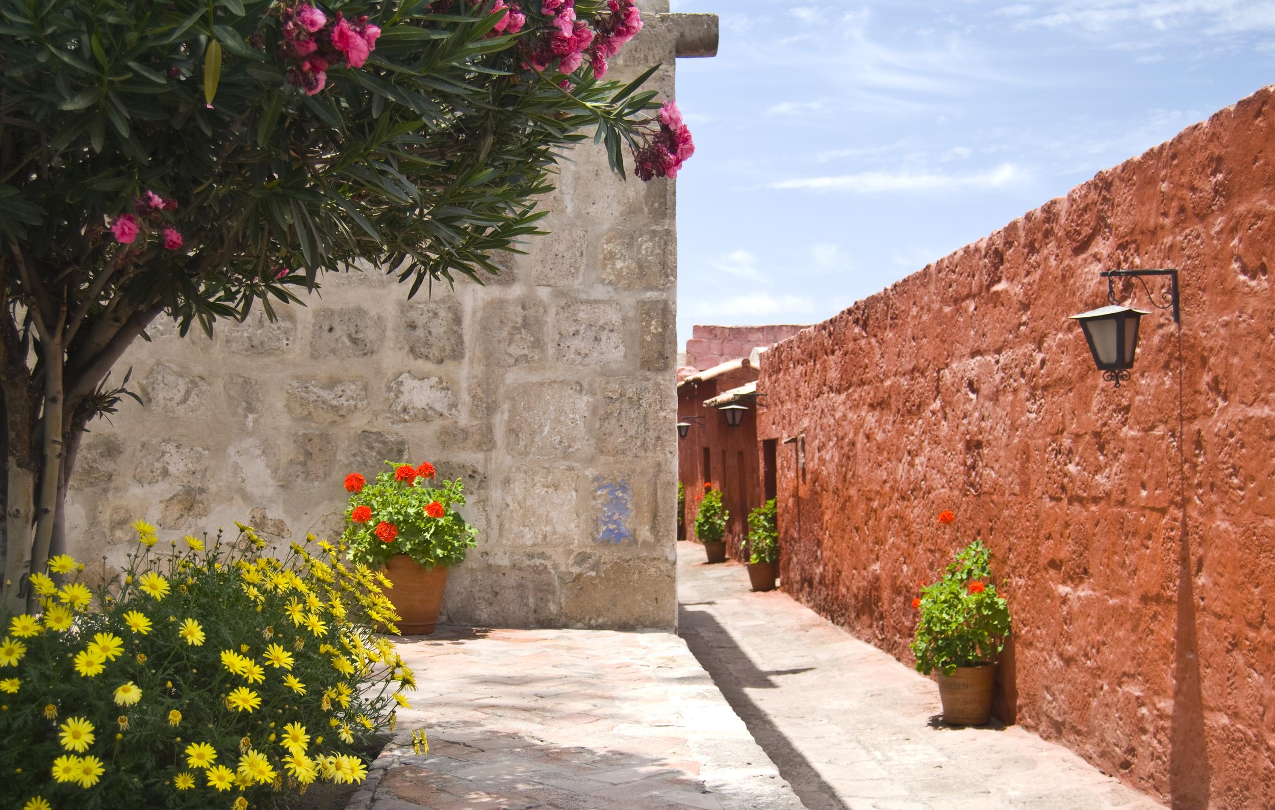 santa-catalina-monastery_4132756754_o.jpg