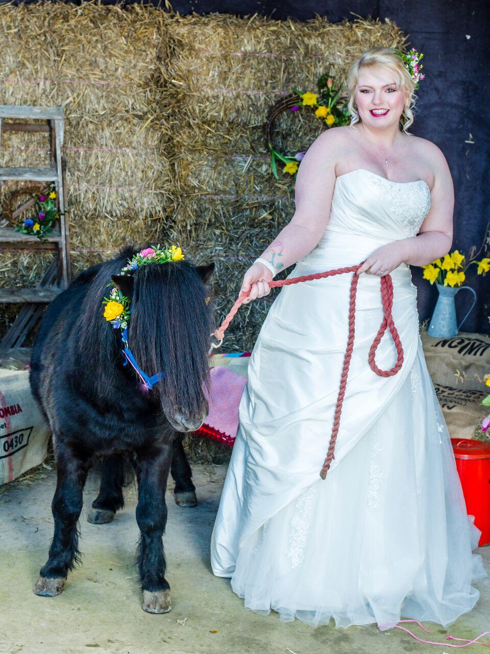 spring bride shetland pony.jpeg