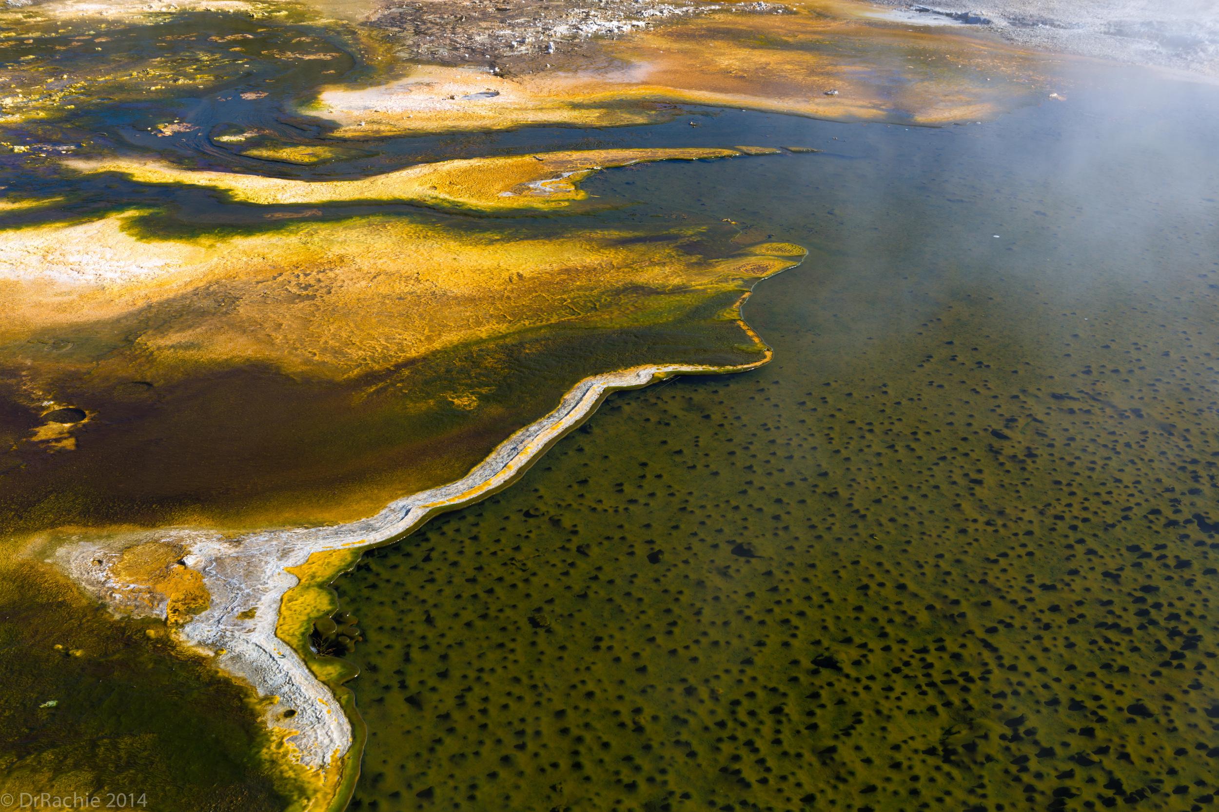 cyanobacterial-mats-yellowstone-national-park_15655621896_o.jpg