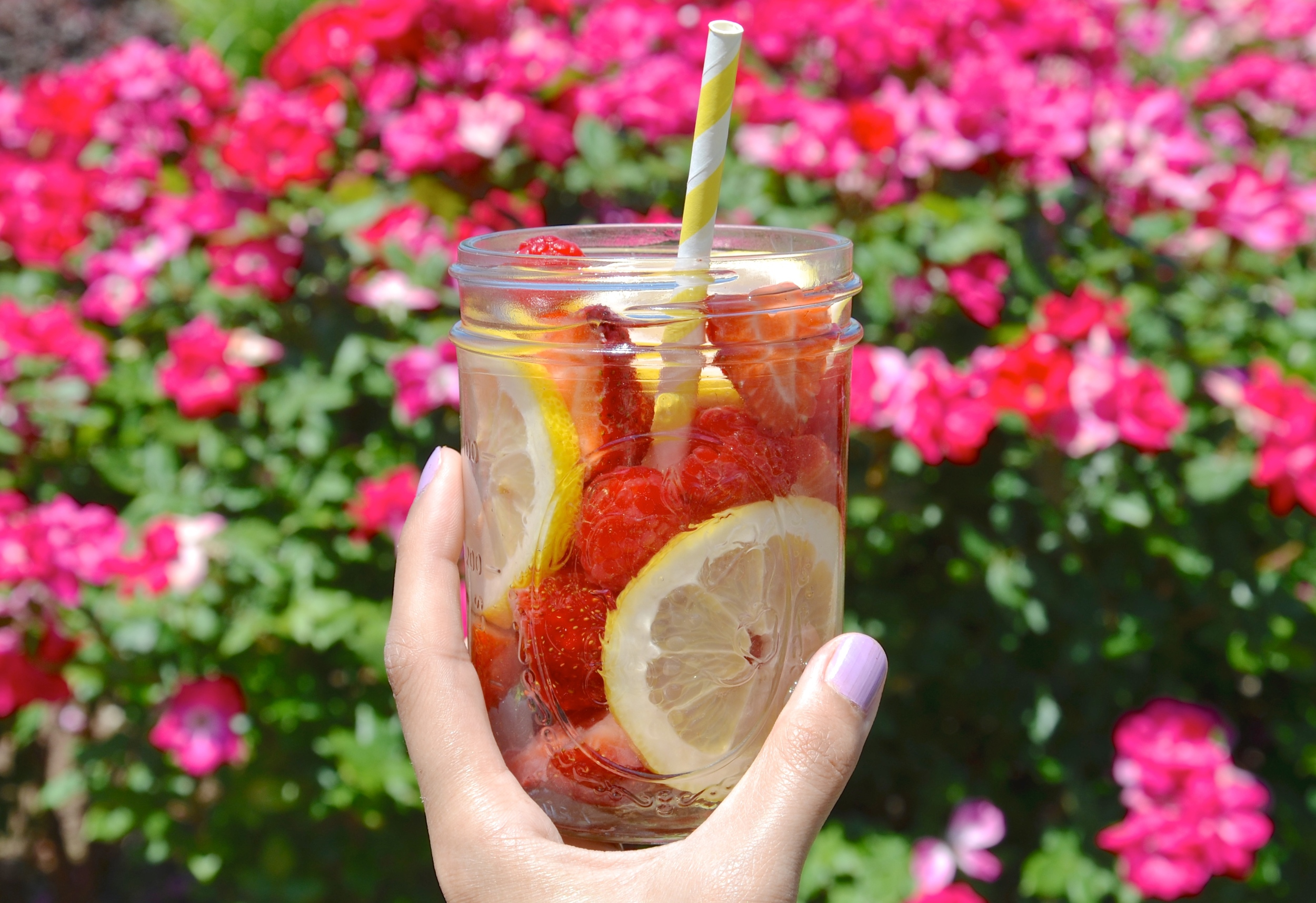 Strawberry, Raspberry, and Lemon Infused Water