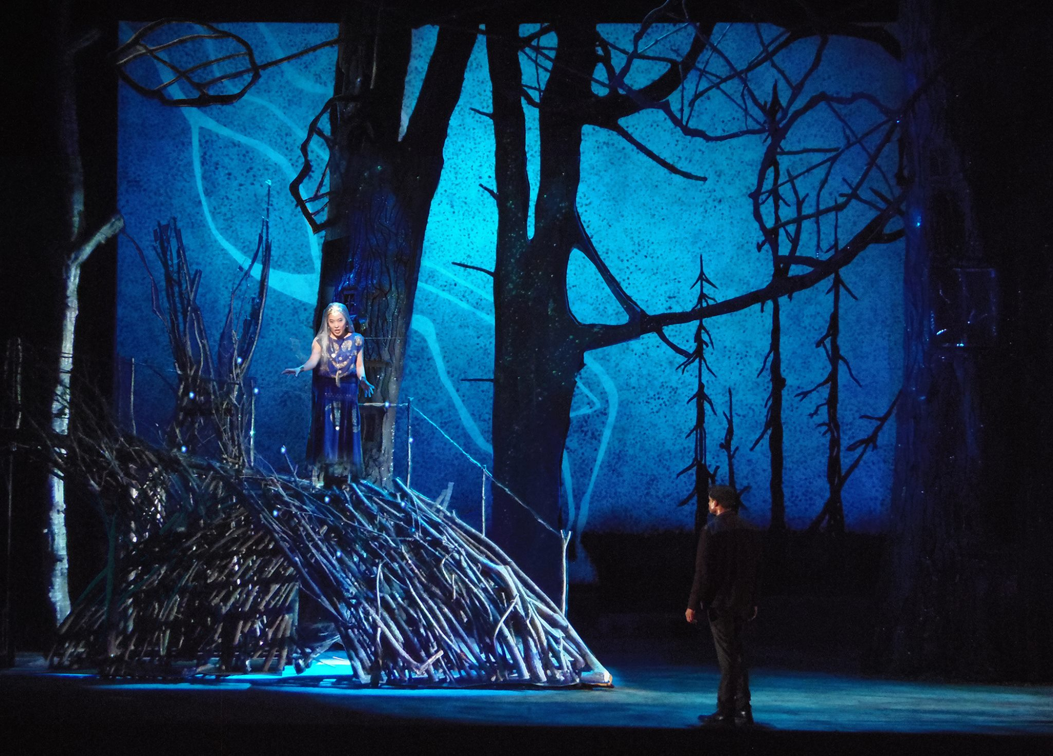 Queen of the Night, Magic Flute, The Glimmerglass Festival   2015