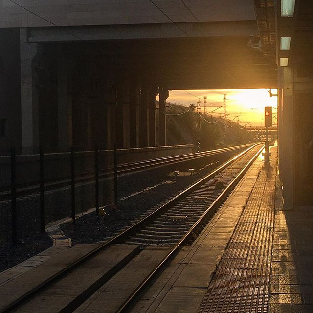 Life will change without our permission. It's our attitude that will determine the ride... • • • • #photography #photographer #photooftheday #spain #segovia #ave #vias #train #trip #life #lifequotes #changeslives #sunset #sunsetporn #contraluz #jj_daily #instamoments #instadaily