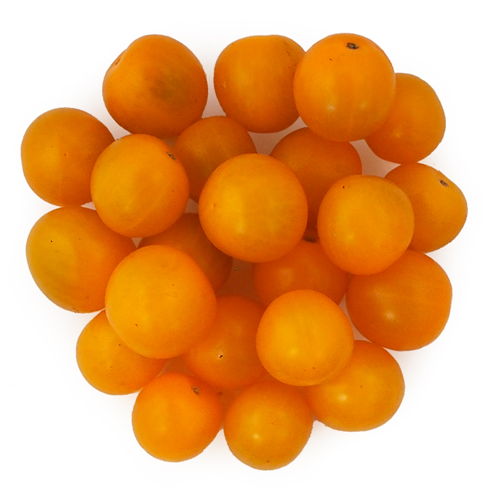 Yellow Cherry Tomatoes.jpg