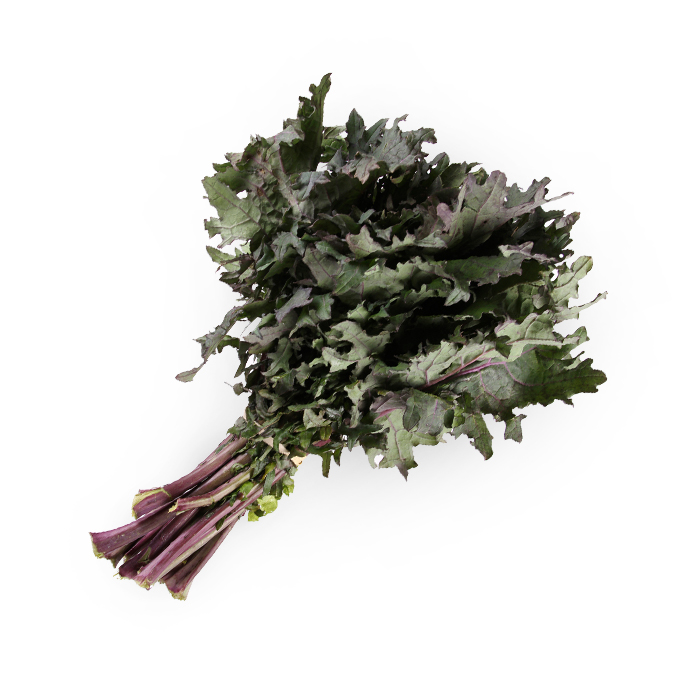 Purple Kale.jpg