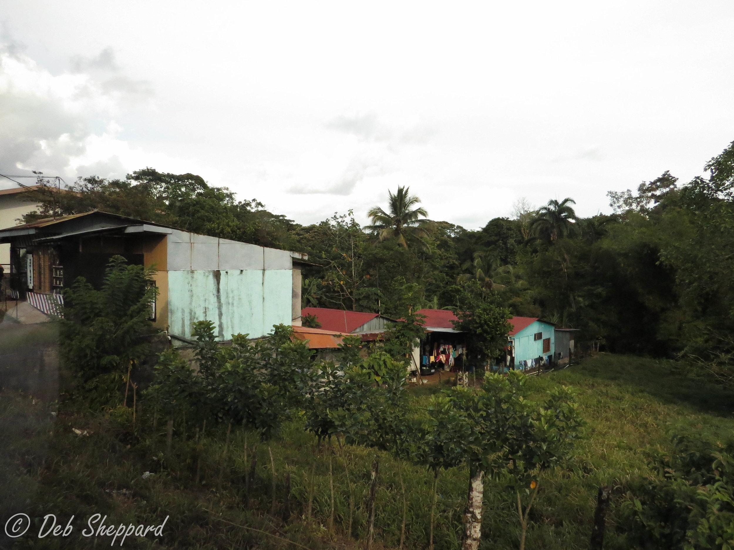 Costa Rica STM 2015 - Lisa Mai, CEC