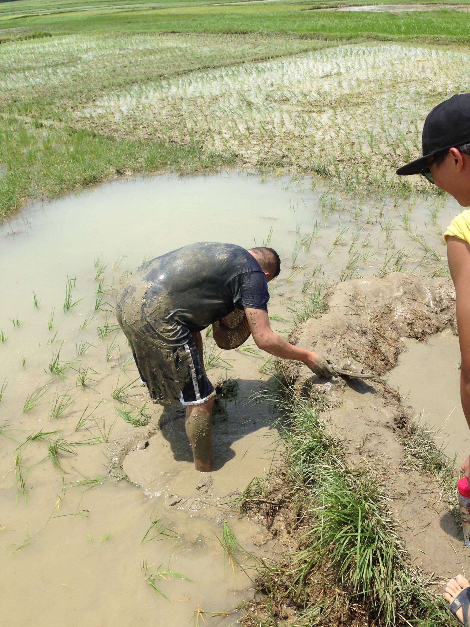 During one of the days, we had a chance to help a student plant rice and spend time with the family. Near the end of our time there, Austin fell into the muddy rice paddy!