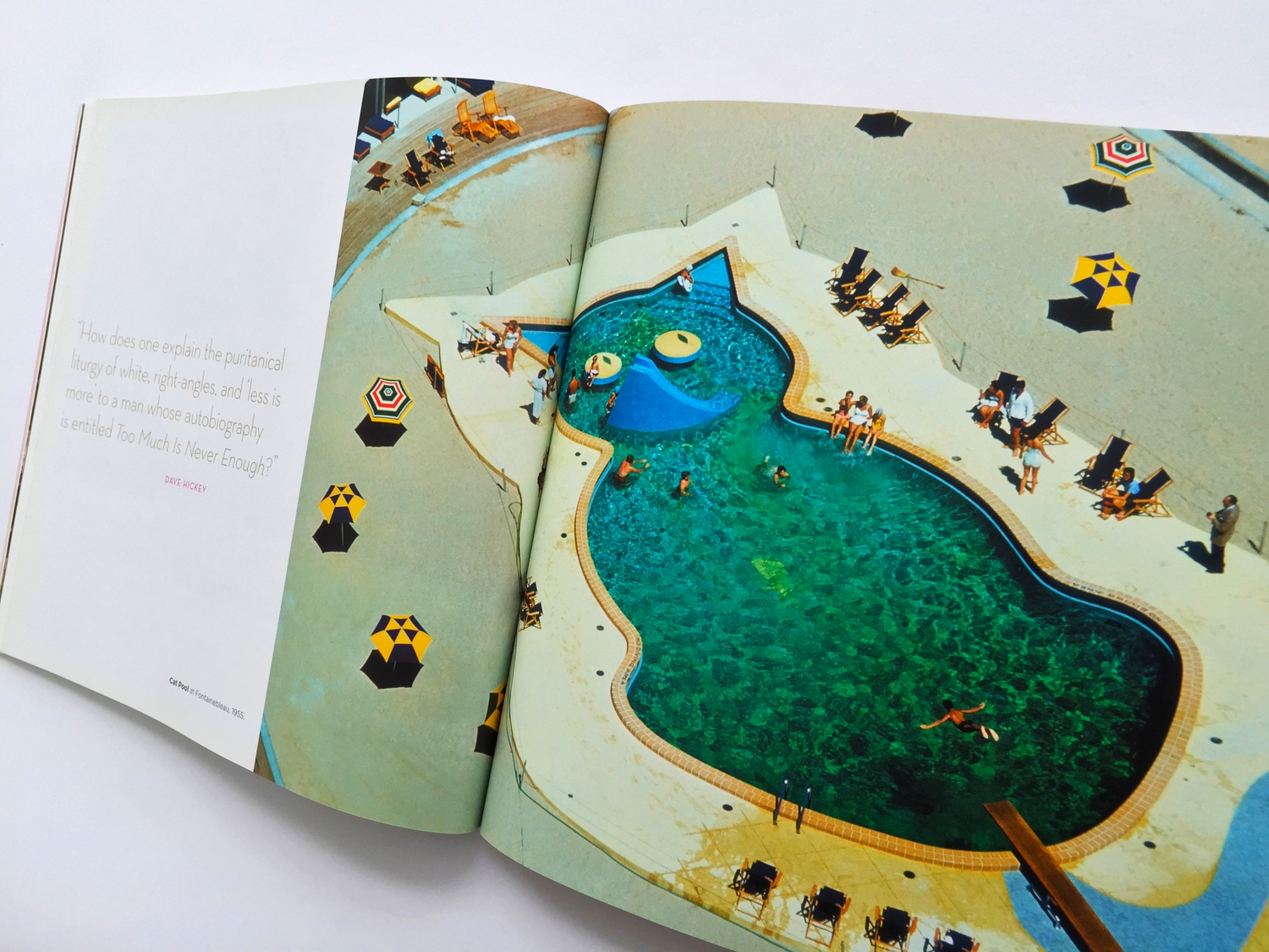 Lapidus Fontainebeau , the Cat Pool, published by Bright City Books