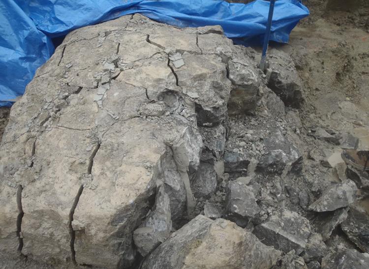boulder 99.PNG
