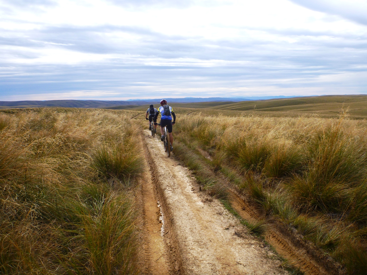 biking in the Papanui Conservation area