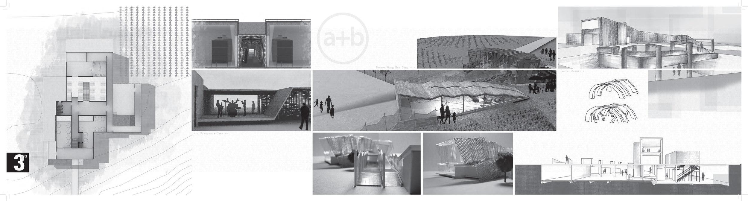 a+bJournal2010-web_Page_17.jpg
