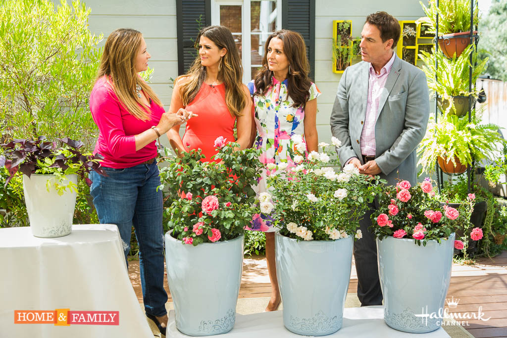 Home and family interview 3.jpg
