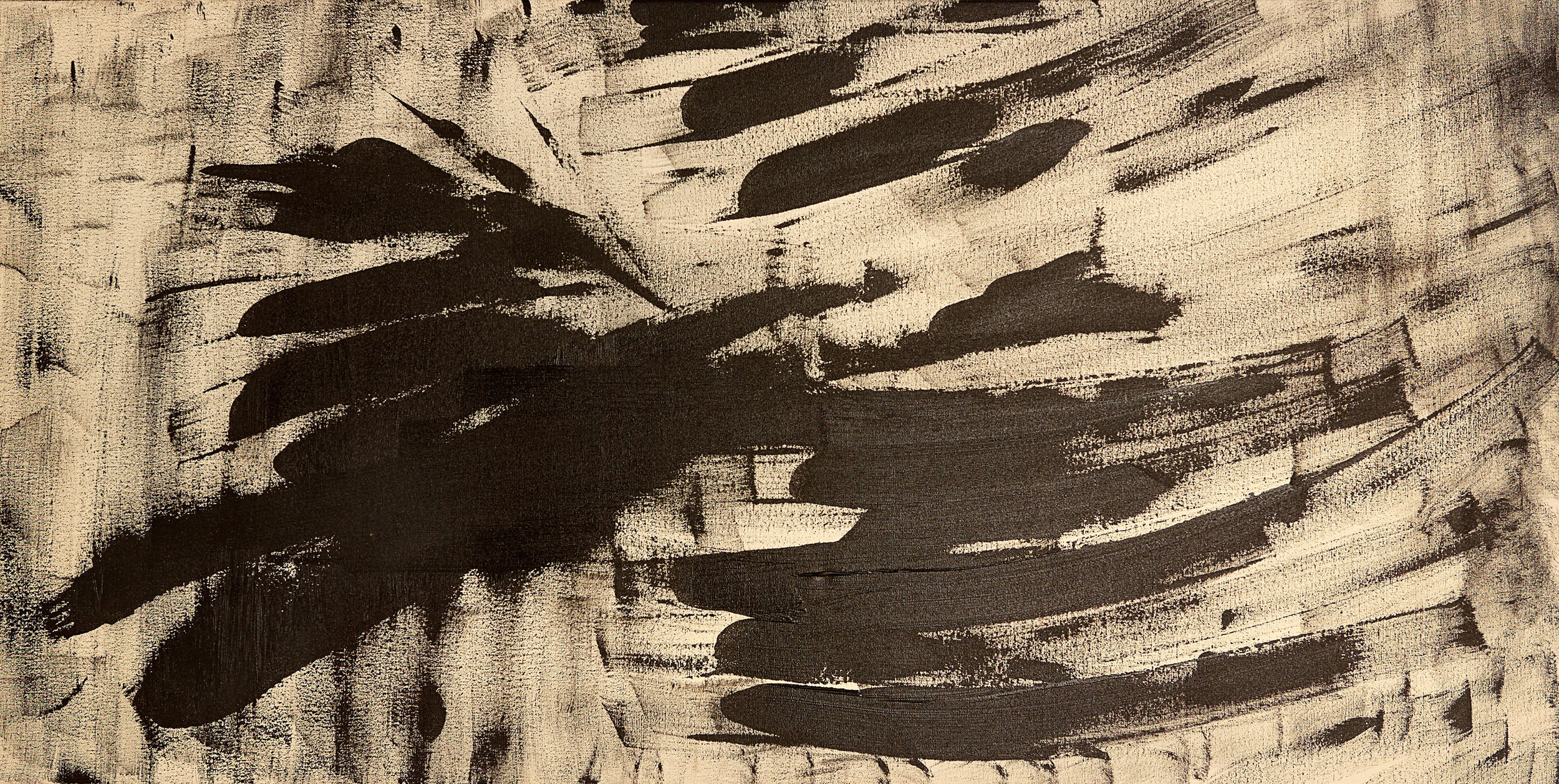 "Dragonflies , 2010   Oil on canvas   20 x 39"""