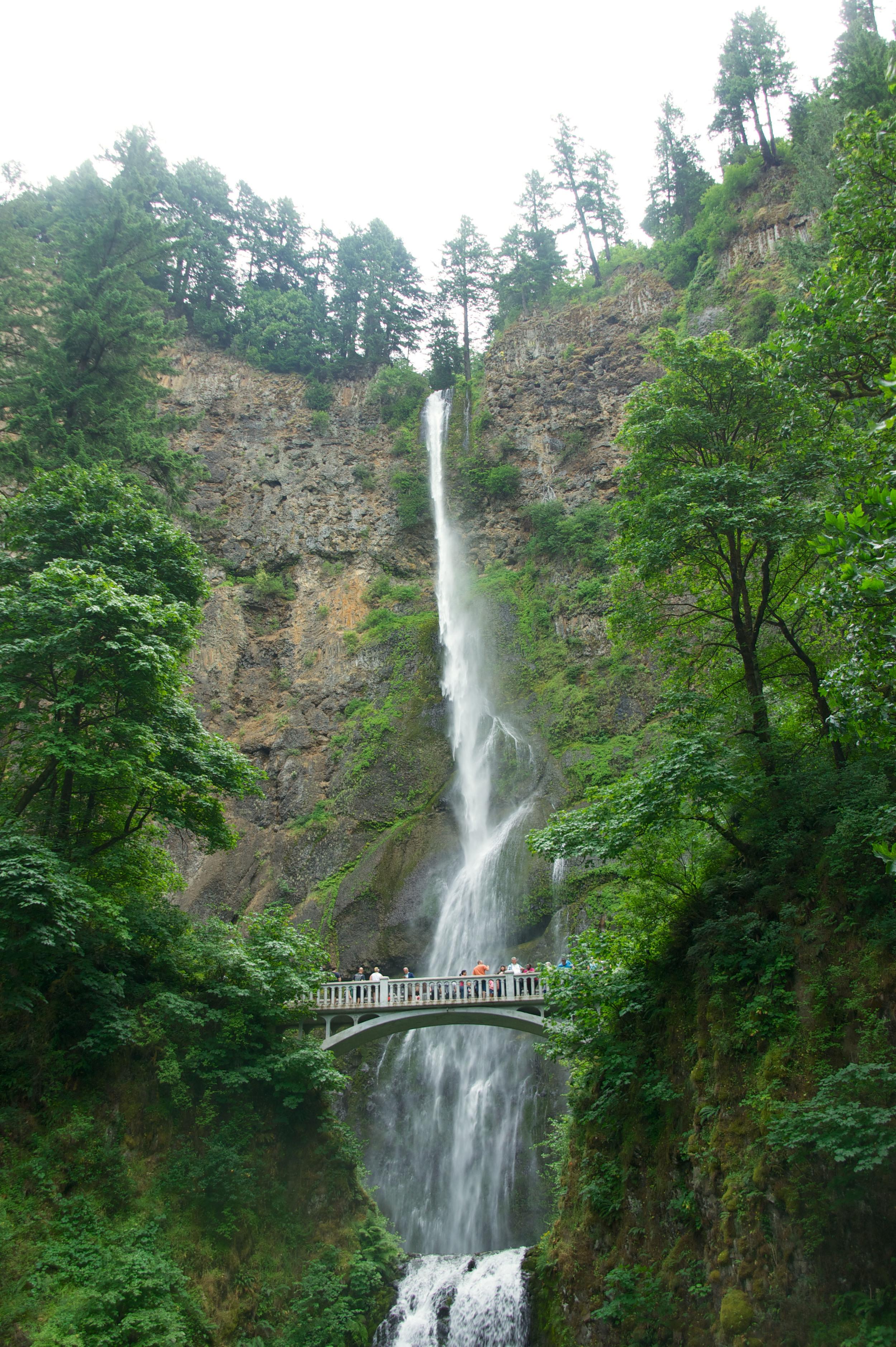 The actual Multnomah Falls