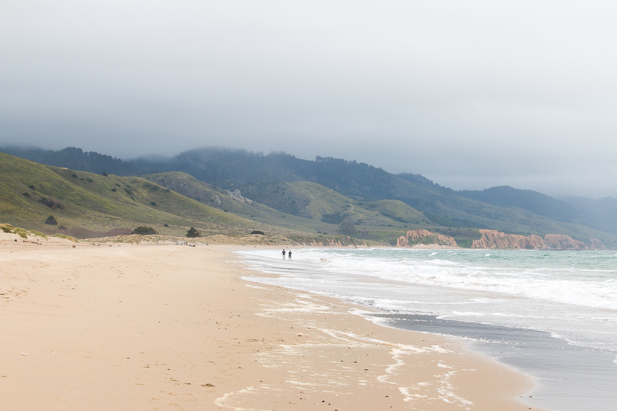limantour-beach-1.jpg