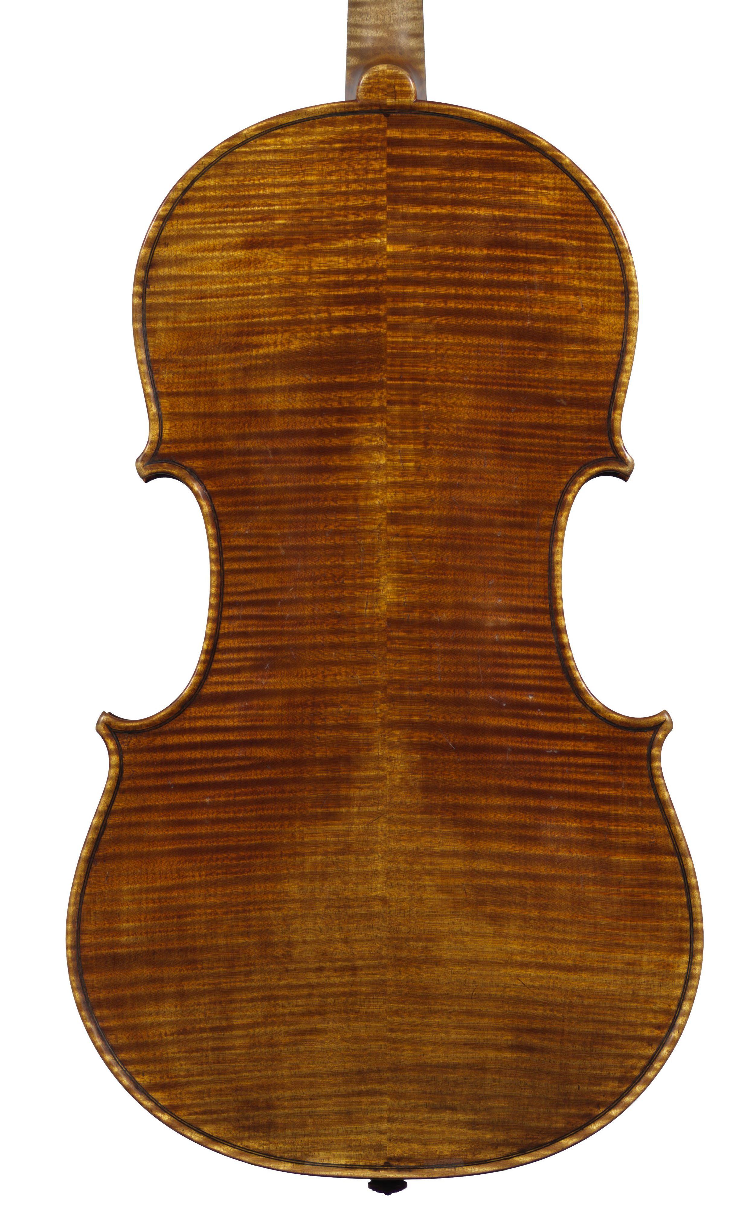 Back Viola 2014.jpg