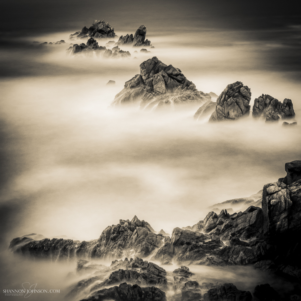 Unforgiving_Point-Lobos-State-Reserve.jpg