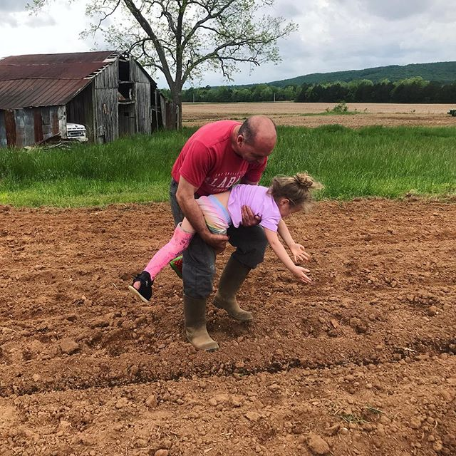 Leah didn't let the cast stop her from planting her sunflowers. 😆🌻 Grandpa will be sore tomorrow!