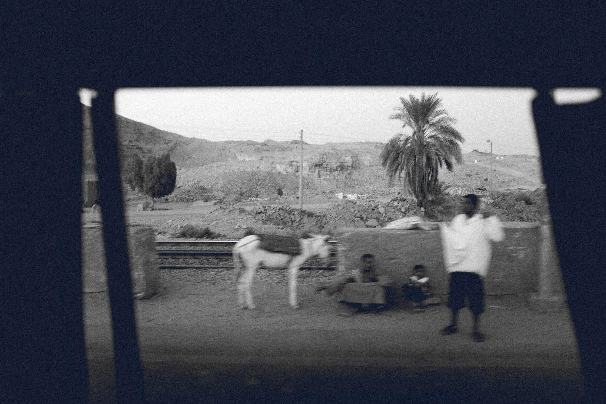 20190811_Aswan_0247-3.JPG