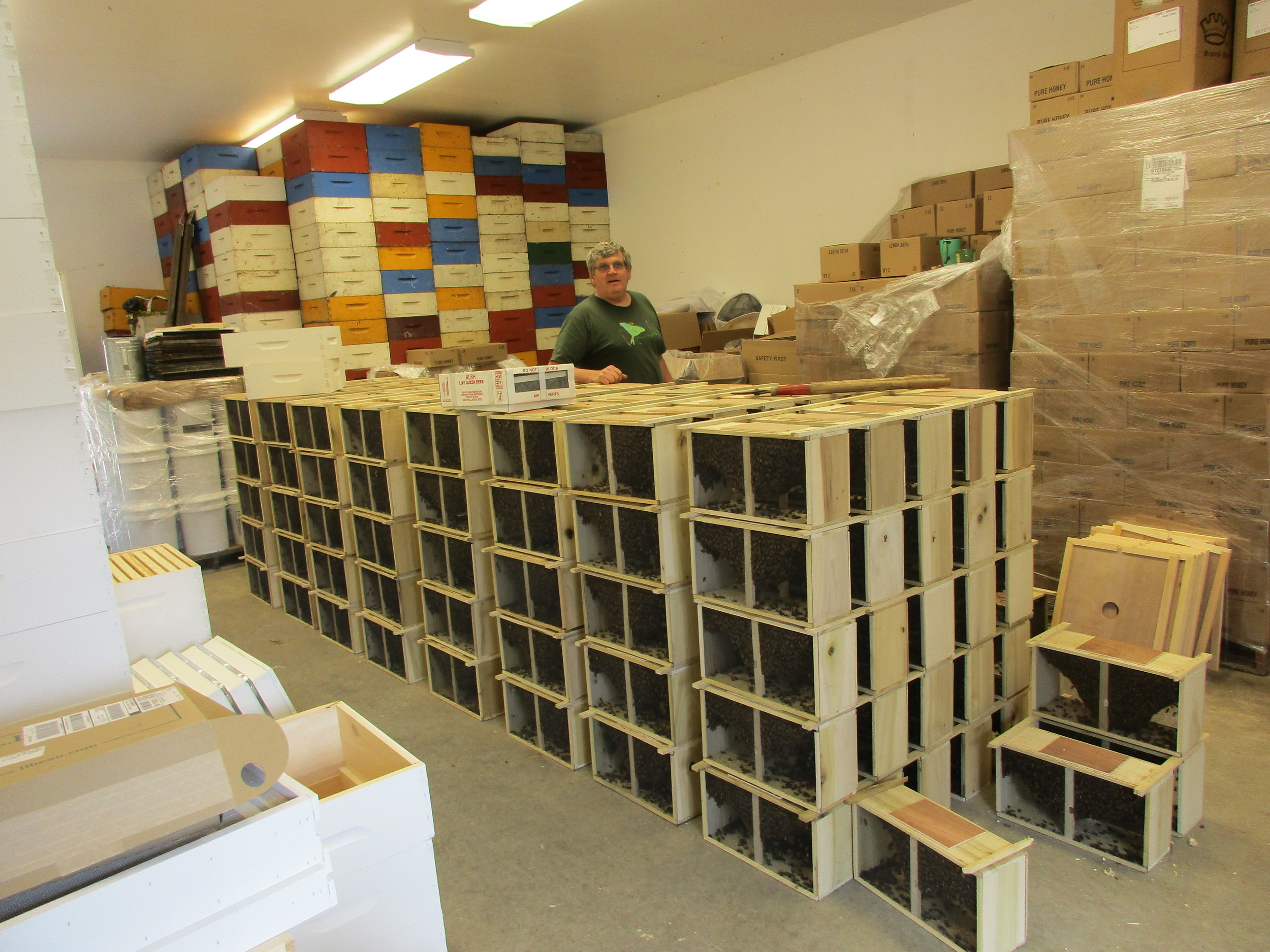 """Adam Fuller, standing behind his stack of bee packages that are going out to customers that day. Each one of these boxes is a """"package"""", complete with one queen and several worker bees, all you need to start a new bee colony in your hive(s) at home. Five boxes deep, 5 tall, and 8 stacks, plus 4 on the floor: he had 204 left at that point! Colorful boxes against the back wall are """"honey supers"""". You add these to the top of your hive to encourage the bees to store their honey there, so you can then extract the honey to sell. On Adam's right, mostly wrapped up in plastic are crates of A&Z Apiary honey. I see A&Z honey in stores all over CT."""