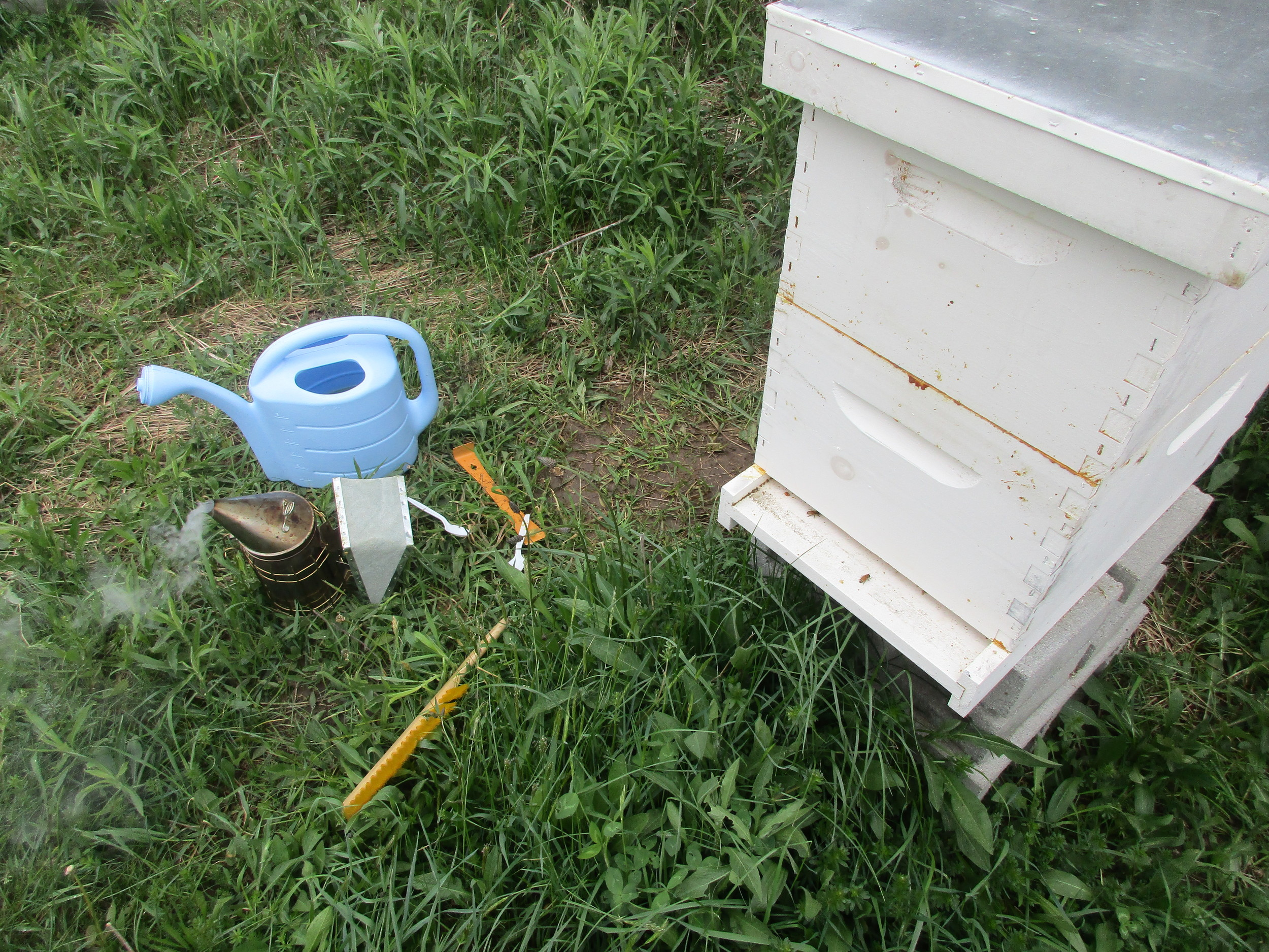 T hursday May 5th . Hive 2, just topped up with sugar syrup on a break in the rain. It was a cold day, and the bees were not out.