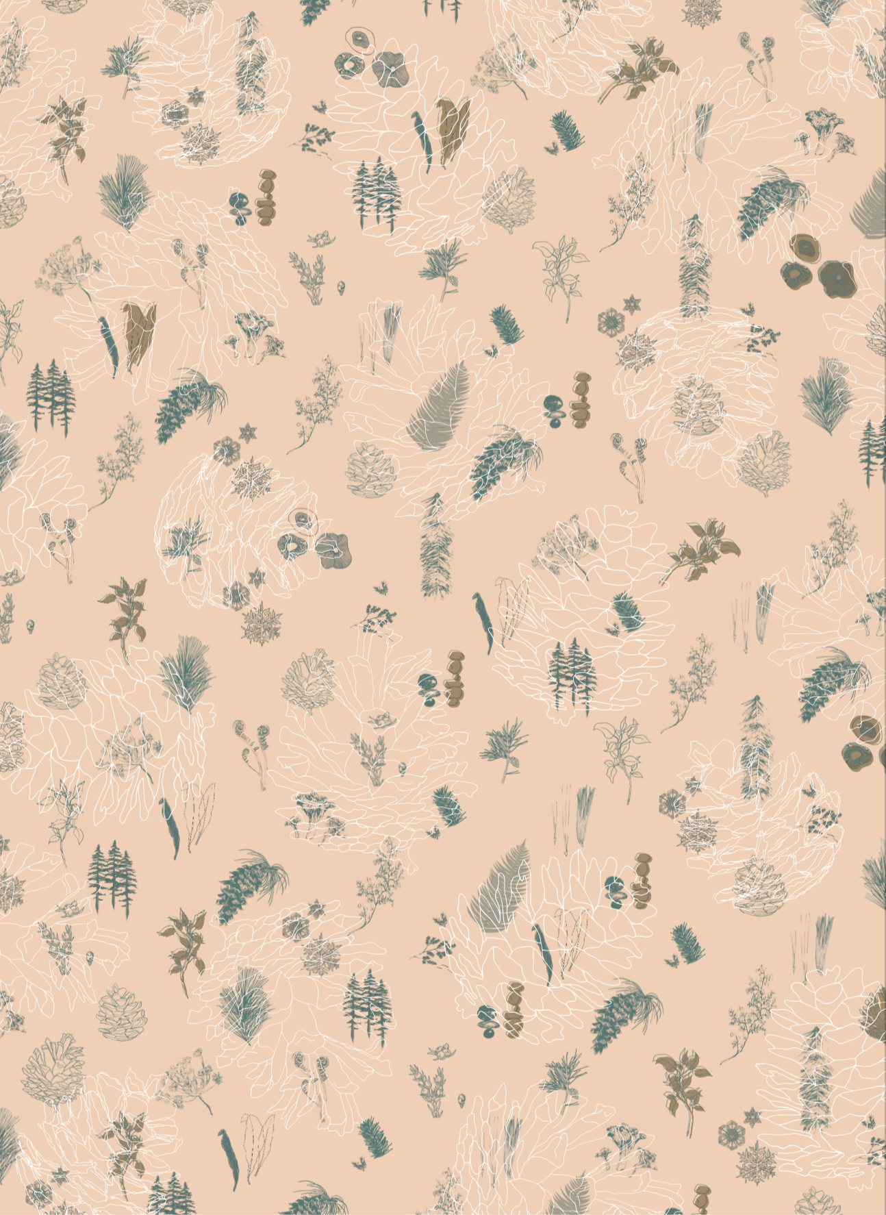 Wrapping Paper Design and Illustrations | Collab with Siobhan Nelson for Kamp Grizzly