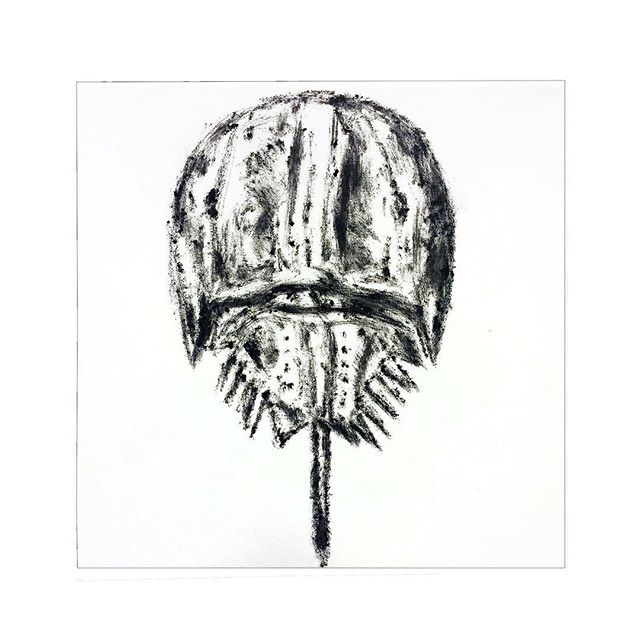 """Horseshoe Crab Painting #350/365, some weird eyeliner I found in my loft on canvas 12"""" x 12""""."""