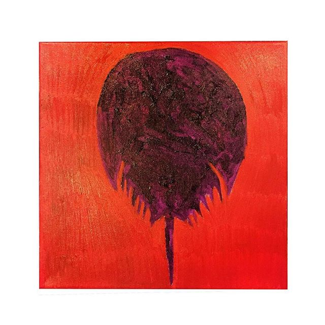 """Horseshoe Crab Painting #352/365, oil on canvas 12"""" x 12""""."""