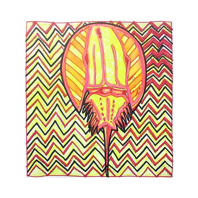 """Horseshoe Crab Painting #358/365, pen, whiteboard marker, and highlighter on paper 12"""" x 12""""."""