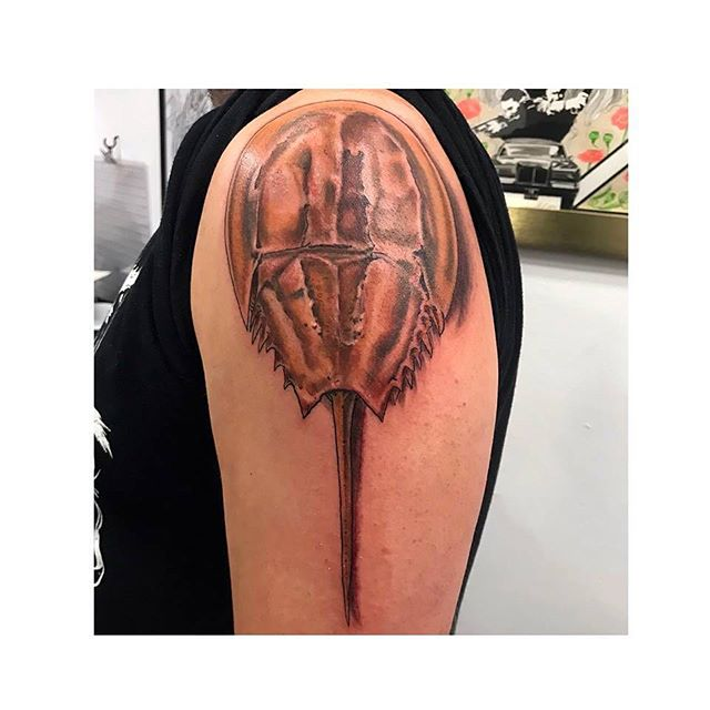 """Horseshoe Crab Painting #365/365, tattoo ink on skin done by Peter Dutro at Do or Die Tattoo and photographed by Ethan Boisvert, 12"""" x 12""""."""