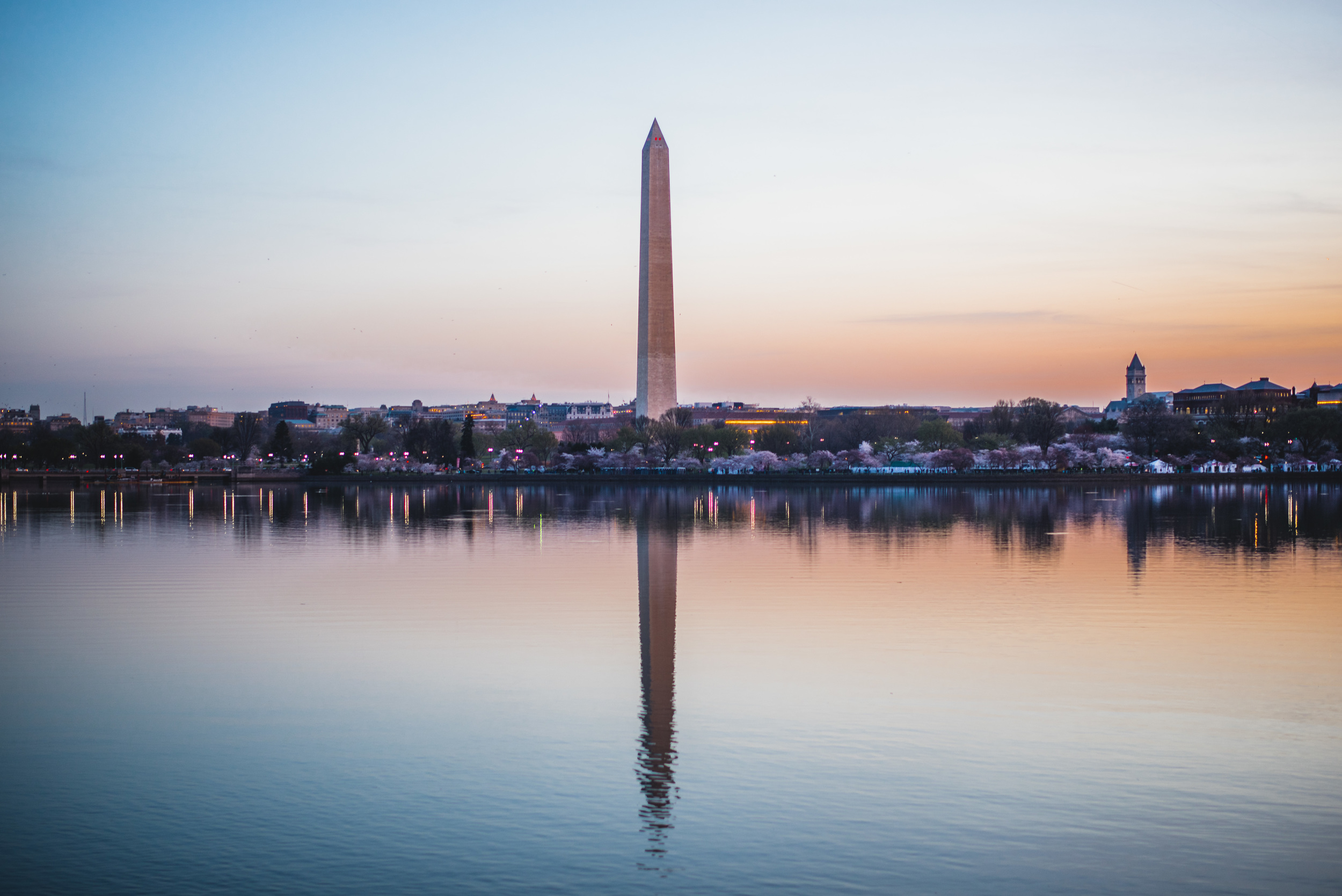 Washington Memorial Sunrise Cherry Blossom.jpg