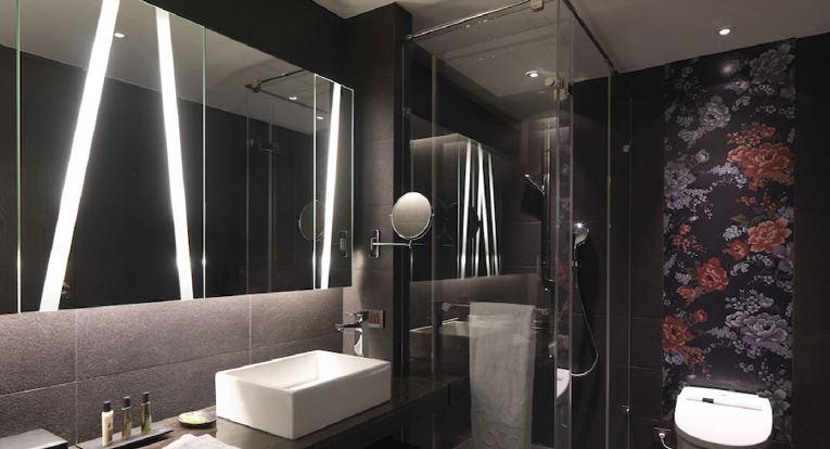 ibis_toilet.JPG